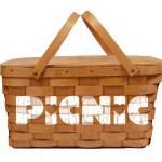 Town_Picnic_2013